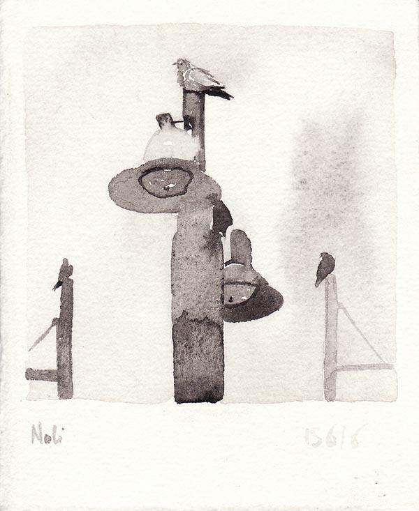 noli-2016 (2)