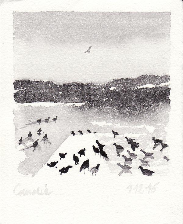 candia-2016 (5)